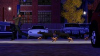 ts3_pets_announce_dog_chase_01
