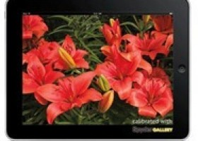 Datacolor Releases SpyderGallery 1.1 iPad Display Calibration Application