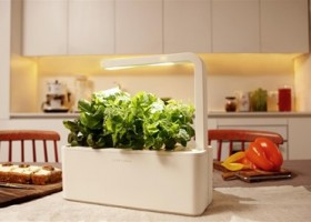 Click & Grow's Smart Herb Garden Now Available for Purchase after Successful Kickstarter