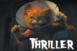 600x400_Thriller_03